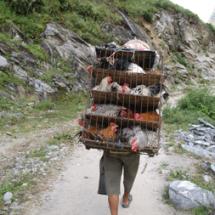 2012_006_nepal